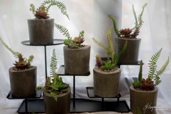 Τσιμεντένια κασπώ με τεχνητά φυτά.